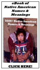 native american indian information art names book